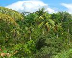Ямайка, Трелони