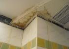 Фото туриста. вот такой у нас был потолок...с которого постоянно текла вода!