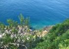 Фото туриста. Адриатическое море