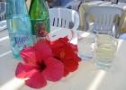 Фото туриста. Вино,вода,цветы!