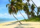 Фото туриста. пляж отеля, чем не Баунти?