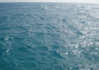 Фото туриста. Безумно красивое Красное море)