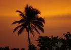 Фото туриста. Закаты Шри-Ланки