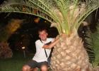 Фото туриста. просто пальма