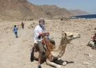 Фото туриста. Это я в арафатке в песках Синая :)
