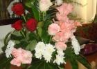 Фото туриста. цветы на мамин ДР