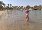 Фото туриста. море в султан бич