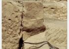 Фото туриста. змеюка эта чисто египетская животина, найдена в развалинах Карнак. храма... - др. фото тут не будет.