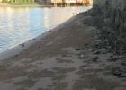 Фото туриста. это лагуна возле моего румма, где я купалась.. мой так сказать личный пляж ))