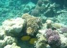 Фото туриста. Подводный мир