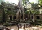 Фото туриста. Камбоджа.В монастыре Та Пром.