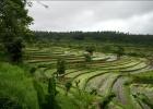 Фото туриста. Бали