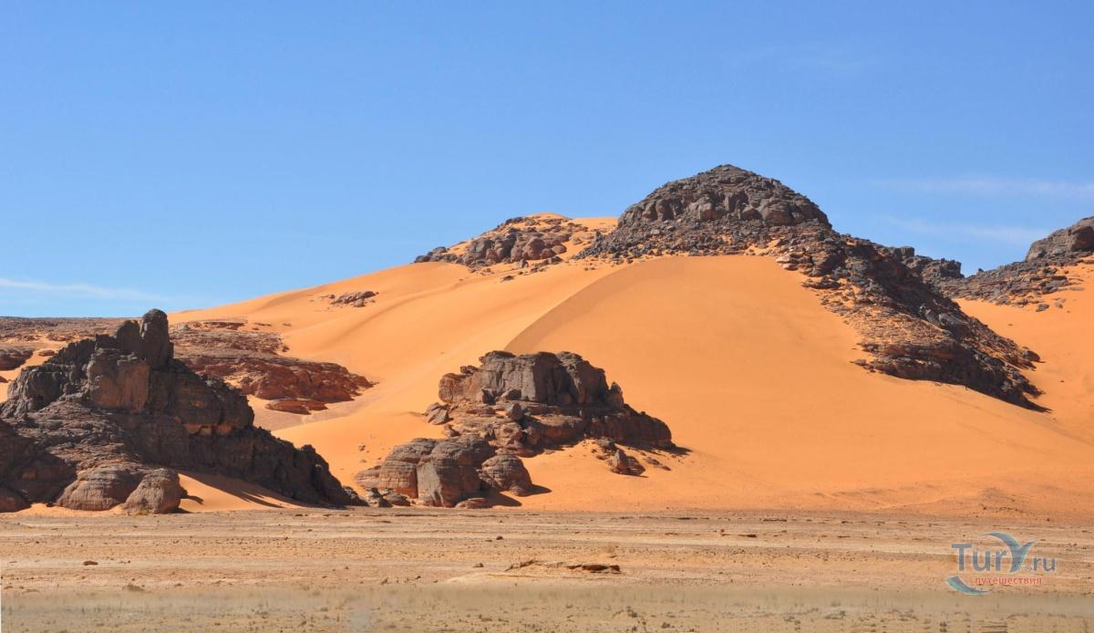 смотреть арэплот алжир фото декорируем