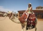 Фото туриста. Это я на верблюде
