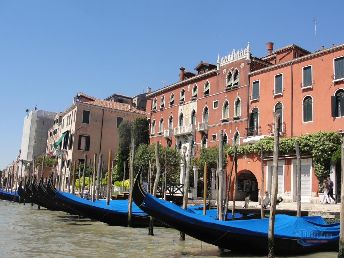зимостойкое, венеция реальные фото туристов типично женским