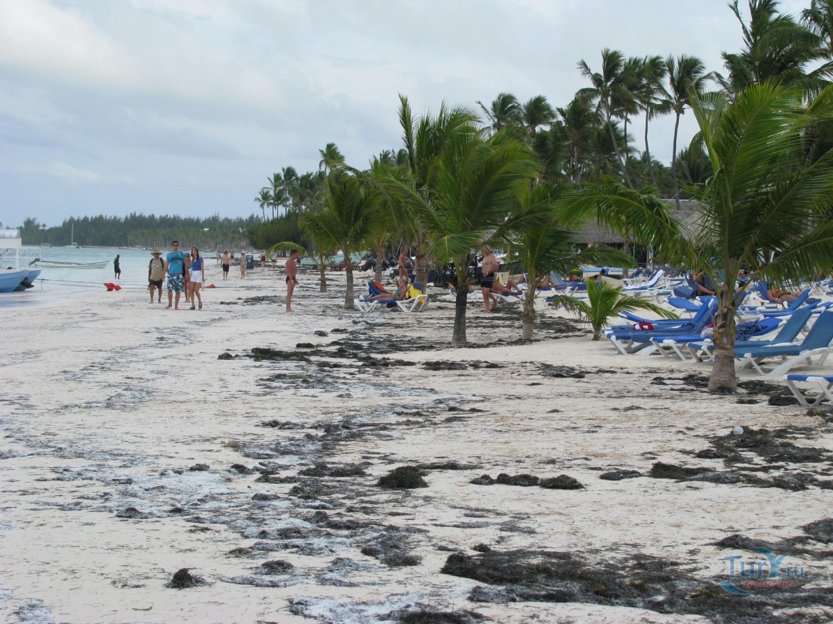 веранду можно пляж баваро описание и фото фото ниже девушка