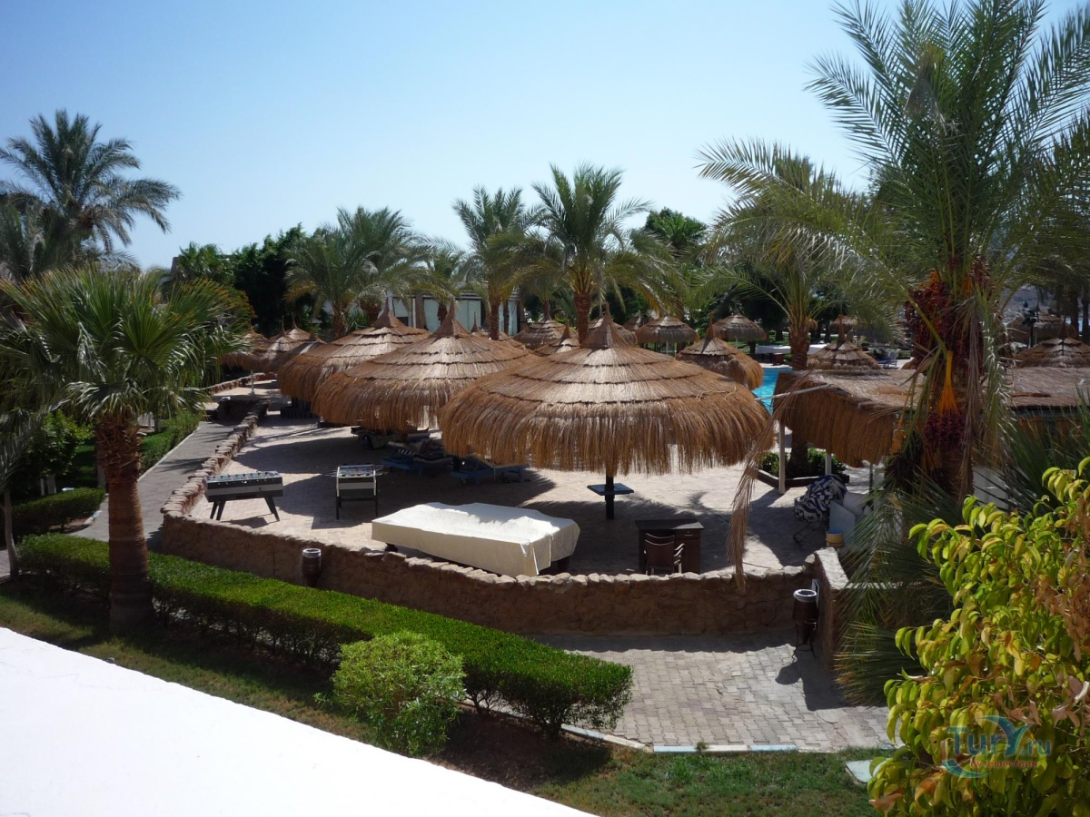 summer vacation on sharm el sheikh beach Best sharm el sheikh beach hotels on tripadvisor: find traveler reviews, candid photos, and prices for 158 waterfront hotels in sharm el sheikh, egypt.