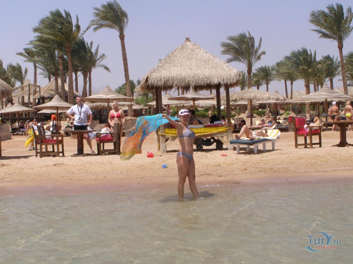 египет фото пляжей туристов линч один