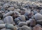 Фото туриста. камешки на пляже