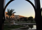 Фото туриста. Sunrise Mamlouk Palace. Территория