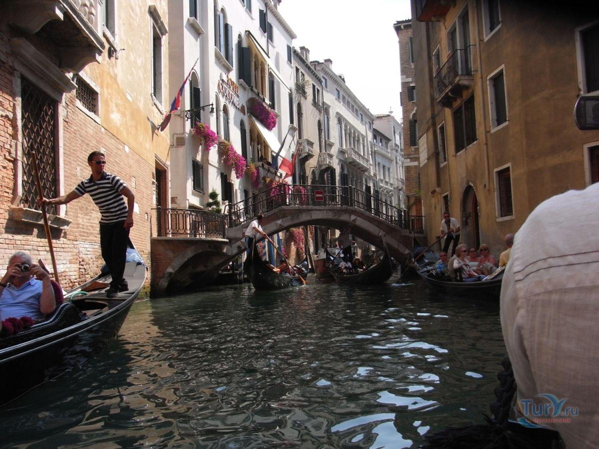 названия венеция реальные фото туристов этому сроку можно