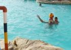 Фото туриста. водное поло