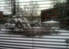 Фото туриста. Вид из окна с утра, за это и люблю Финляндию! :)
