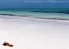 Фото туриста. Антлантический океан