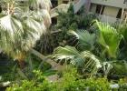 Фото туриста. внутренний двор (вход в номер)