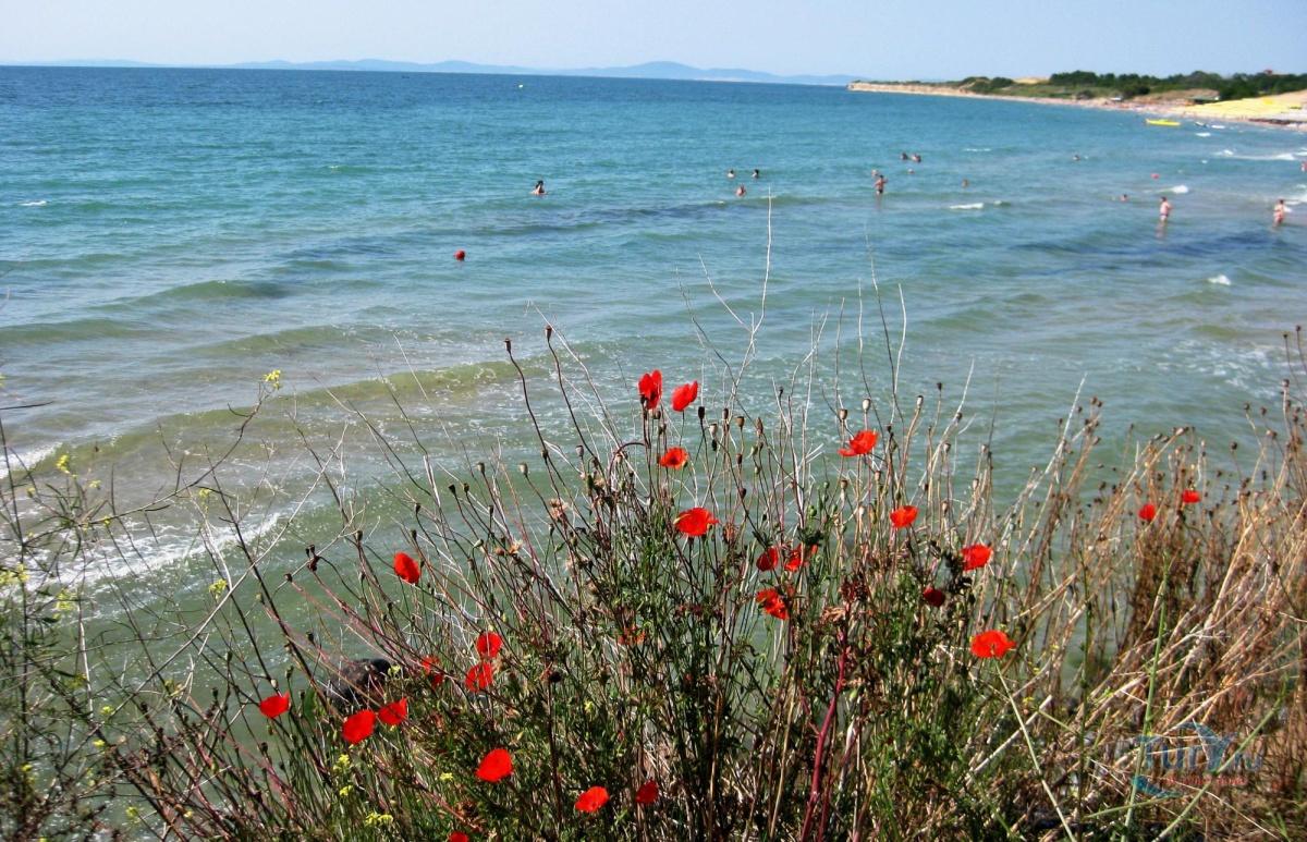 В болгарии фото диких пляжей