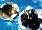 Фото туриста. здоровая еда - рыба и мидии