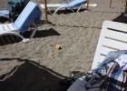 Фото туриста. Пляж не уступает гостинице по чистоте