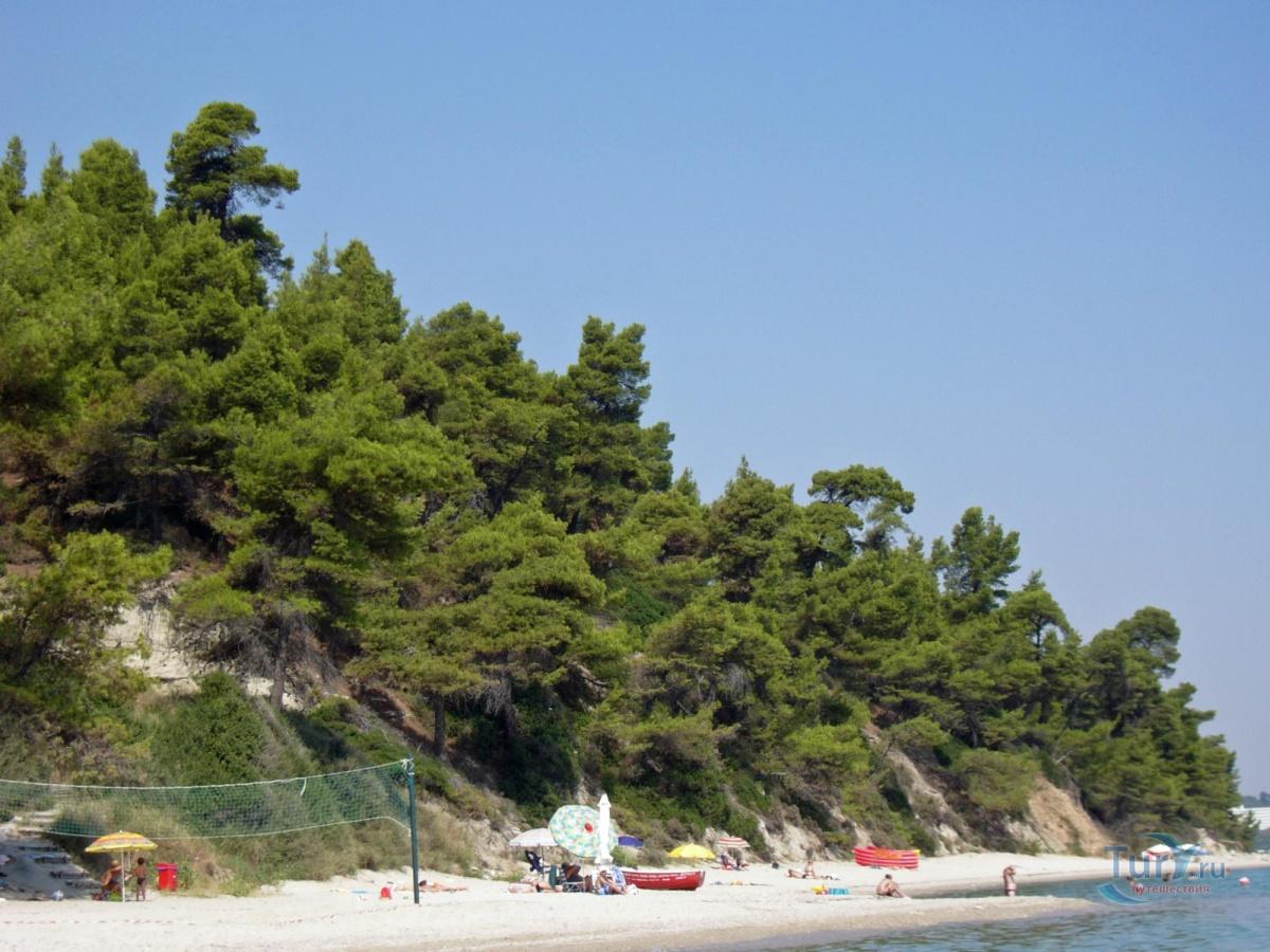 первая отечественная халкидики греция отзывы туристов о пляжах фото участия сотрудников ппс