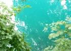 Фото туриста. вода в озере