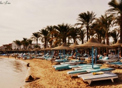 Dessole Marlin Inn Beach Resort , ���� �����