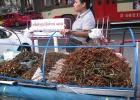 Фото туриста. экзотическая еда
