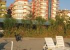 Фото туриста. вид с пляжа. отель оливкового цвета