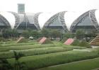 Фото туриста. Аэропорт Бангкока
