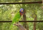 Фото туриста. в парке птиц