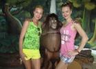 Фото туриста. в зоопарке