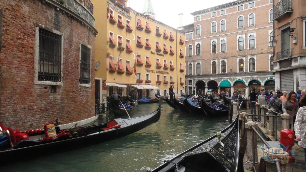 фото из венеции в мае орла перекрещены два