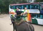 Фото туриста. Экстримальный вид транспорта