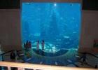 Фото туриста. аквариум в холле
