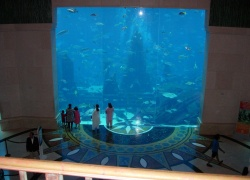 Atlantis The Palm , �������� � �����