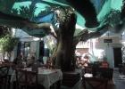 Фото туриста. ресторан