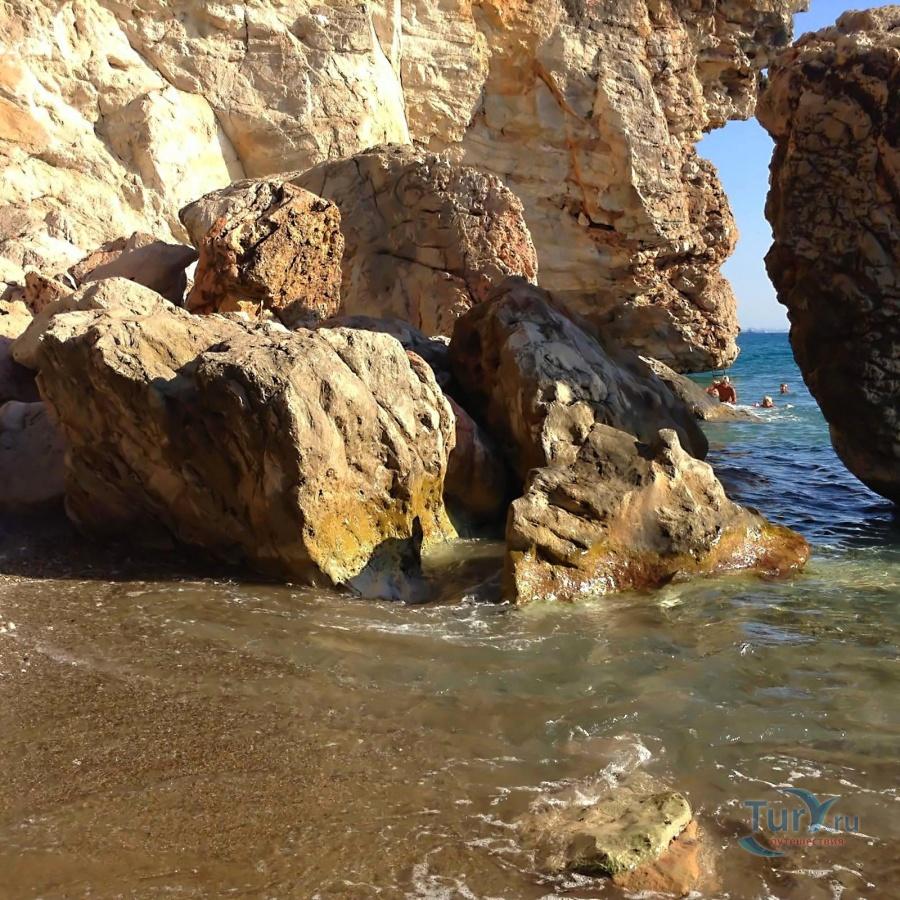 этого фото из дикого пляжа лиске собираются