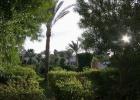 Фото туриста. El_samaka_garden