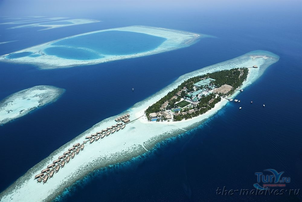 my country the maldives Explore juma abbas's board my country, my maldives on pinterest | see more ideas about the maldives, country and maldives.