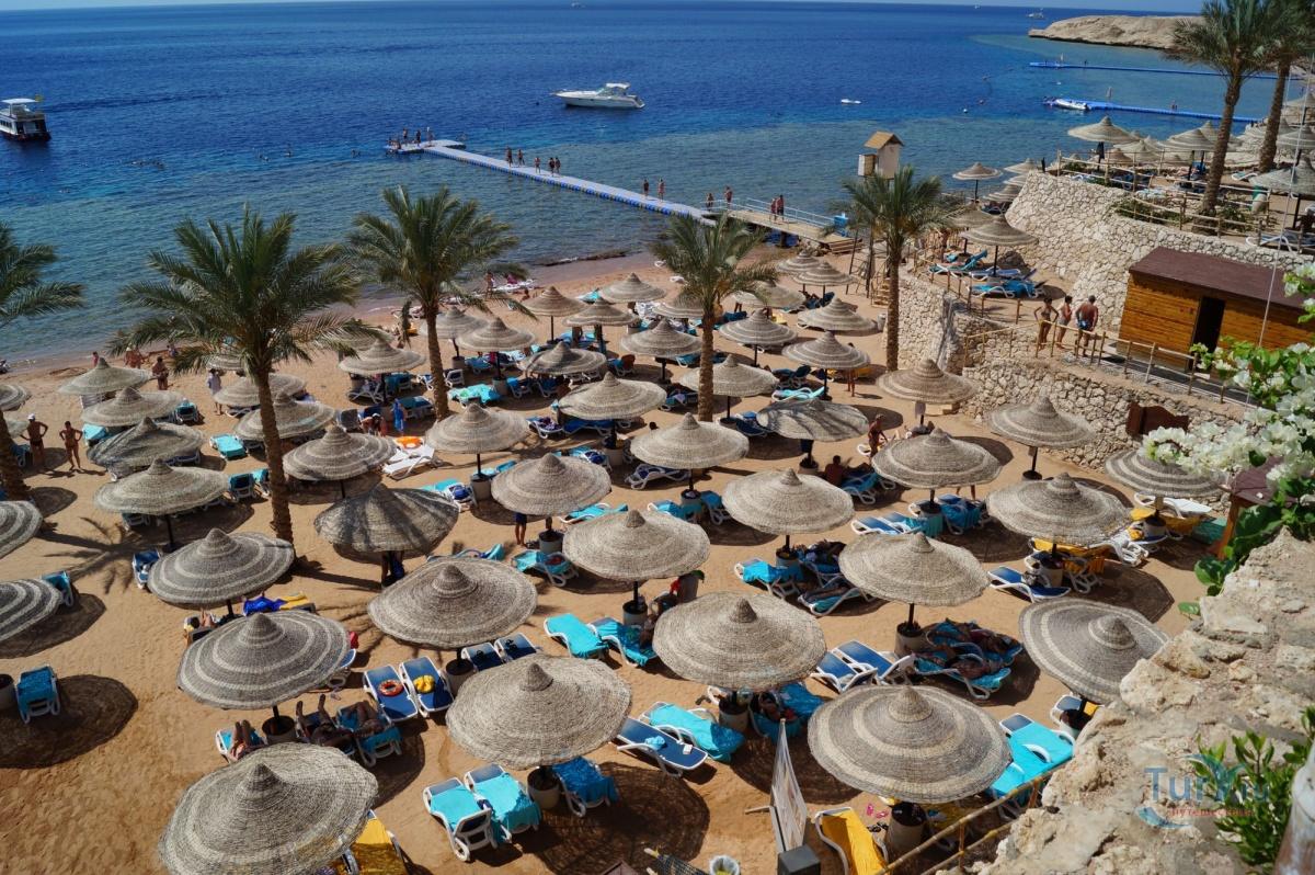 Египет фото пляжей и отелей