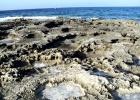 Фото туриста. продолжение каменистого пляжа